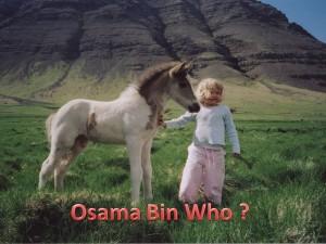 Iceland no terrorist_Osama_bin