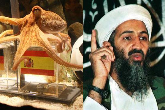 Paul le poulpe et Ben Laden