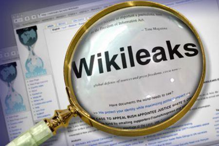 wikileaks_loupe