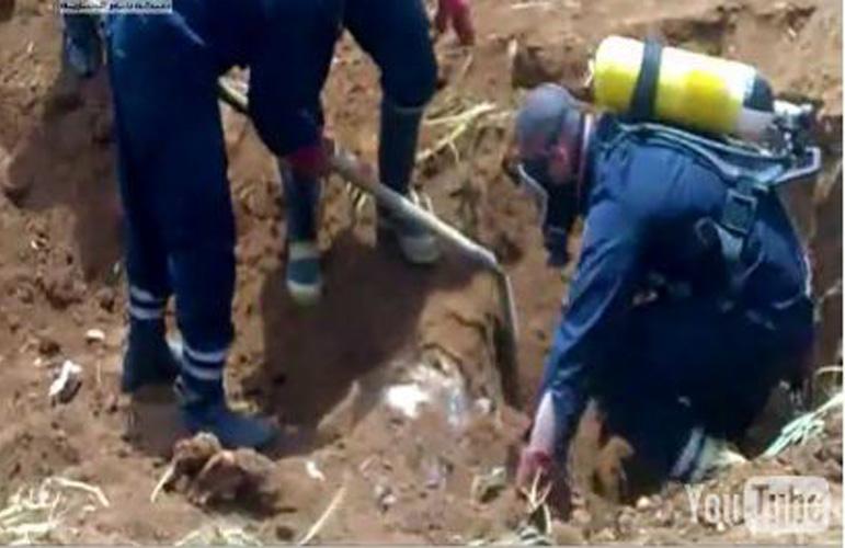Une organisation syrienne des droits de l'homme a découvert près de la ville de Deraa, un charnier avec des dizaines de cadavres.