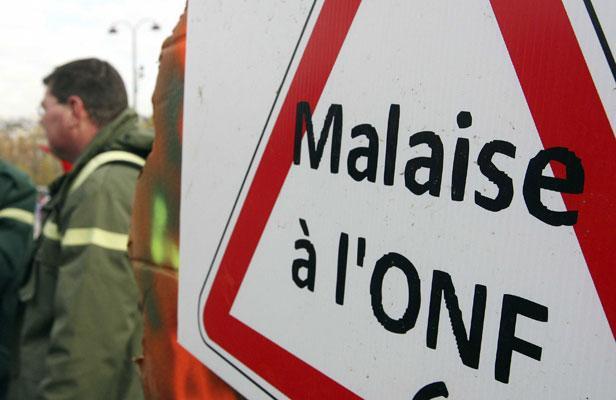 Des agents de l'Office national des forêts (ONF) manifestent devant la tour Eiffel, à Paris le 13 novembre 2008