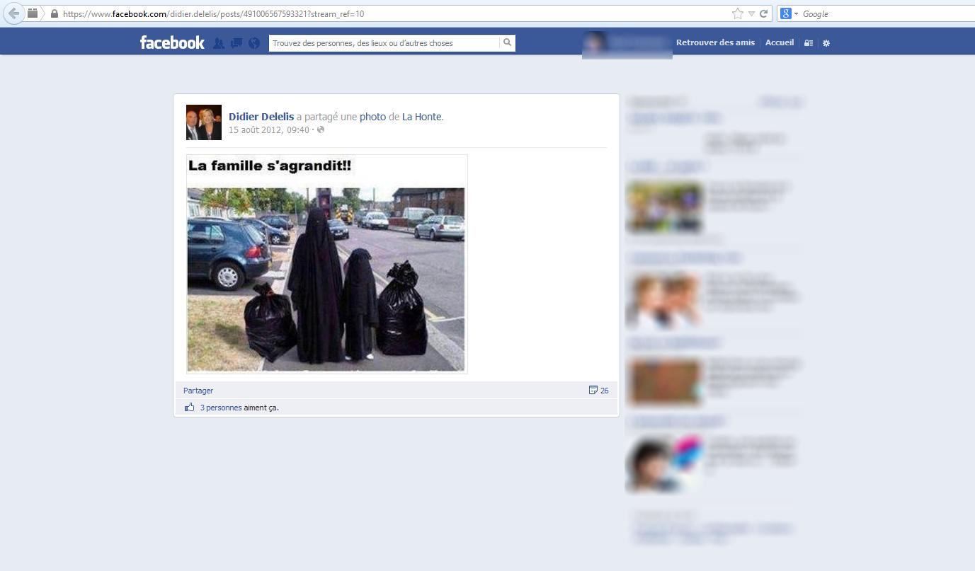 Didier-Delelis-Femmes-en-burka-et-poubelles