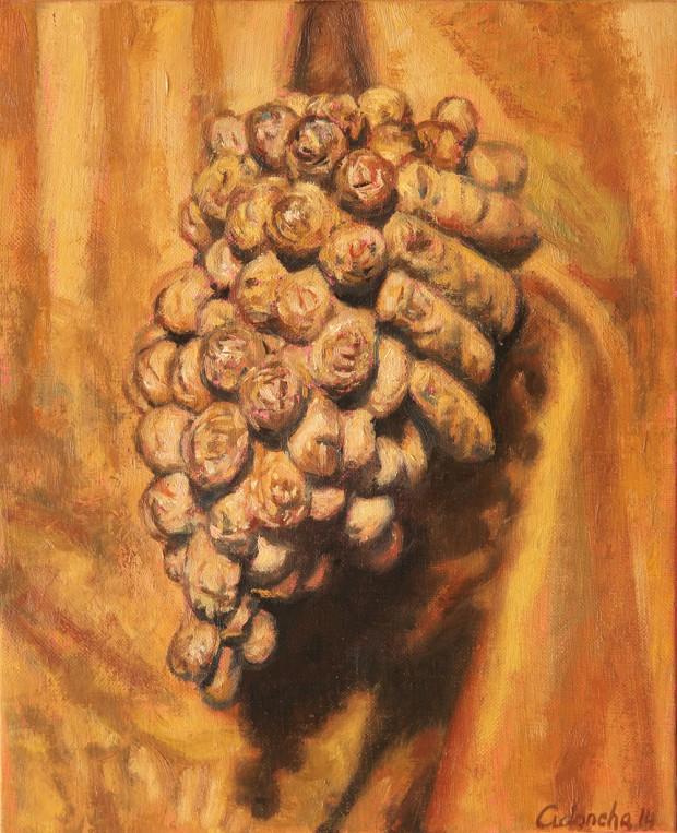 cidoncha-raisin