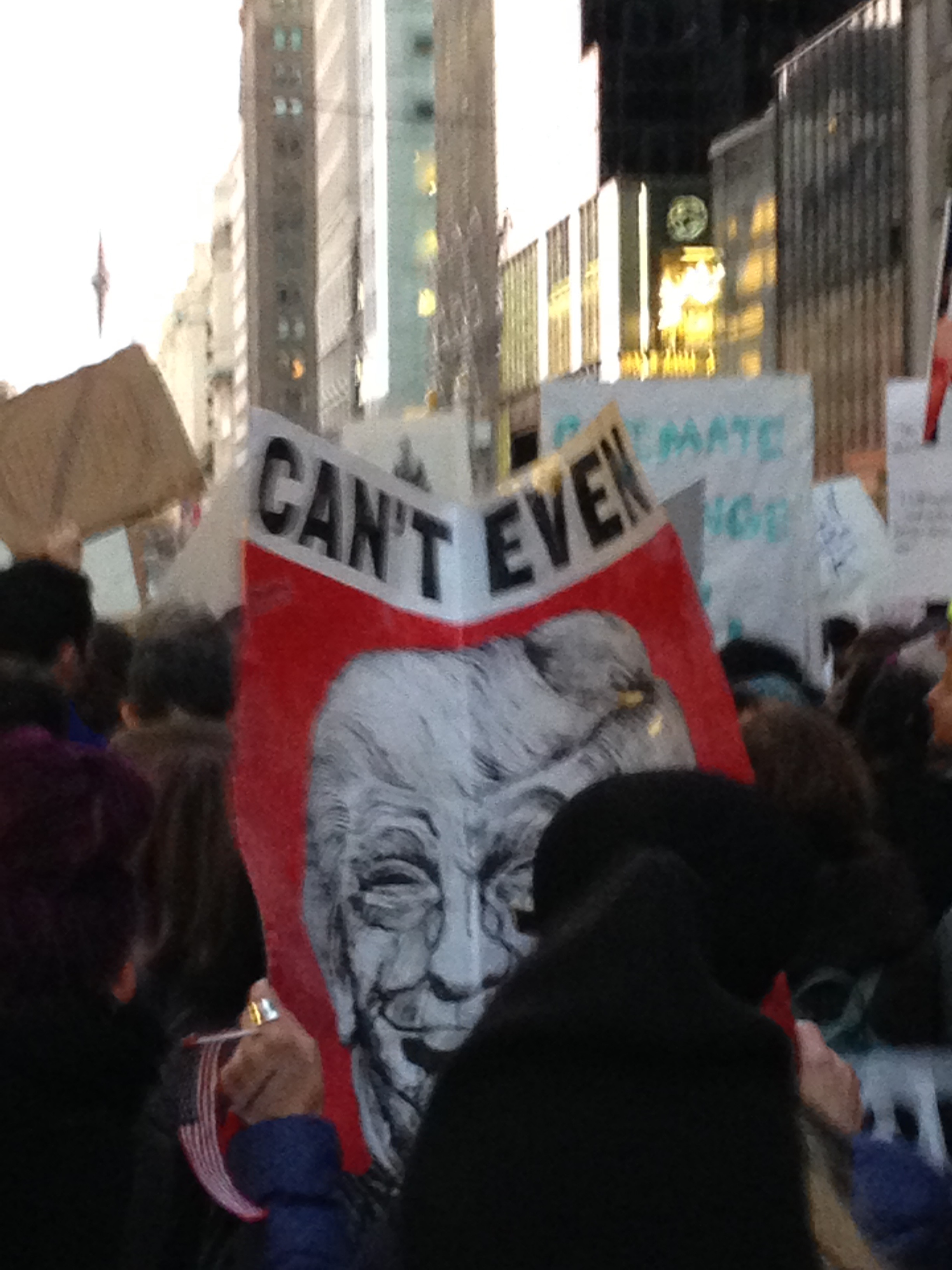 manifestation_anti-trump-new-york-60