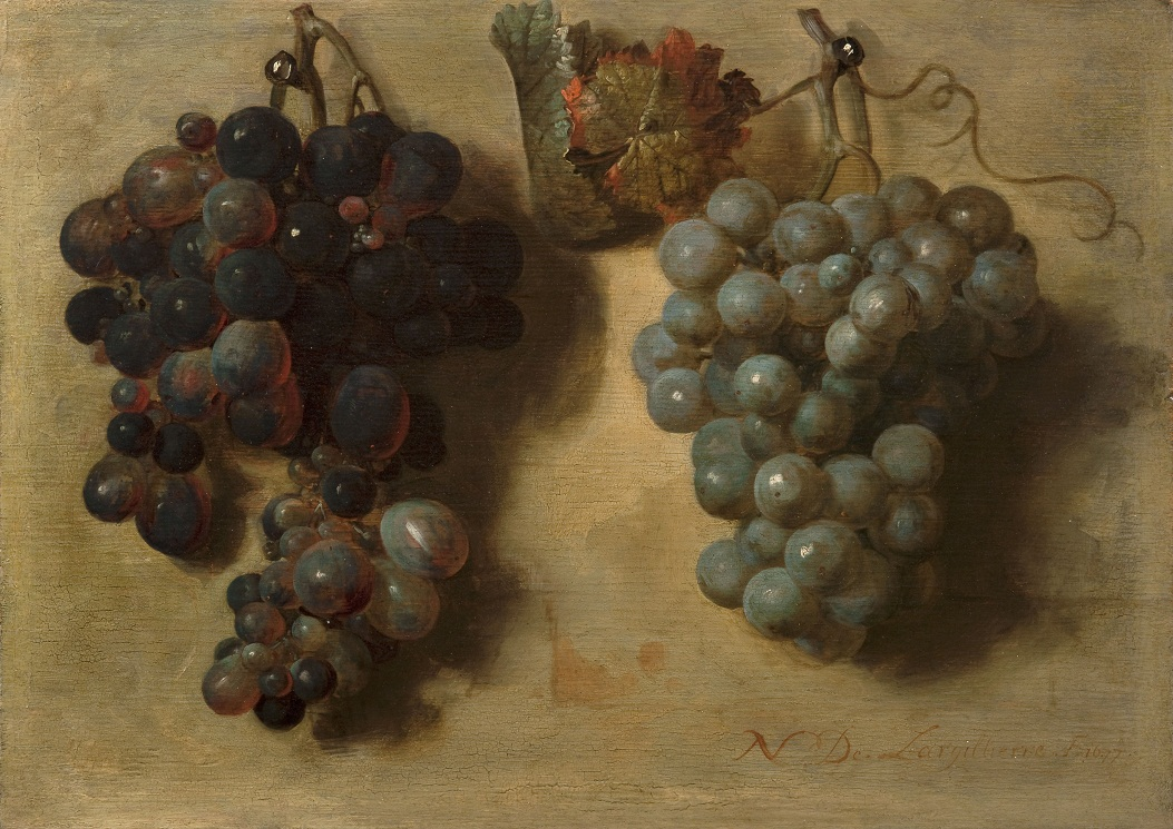 Largilliere-Grappes_de_raisin-Fondation_Custodia