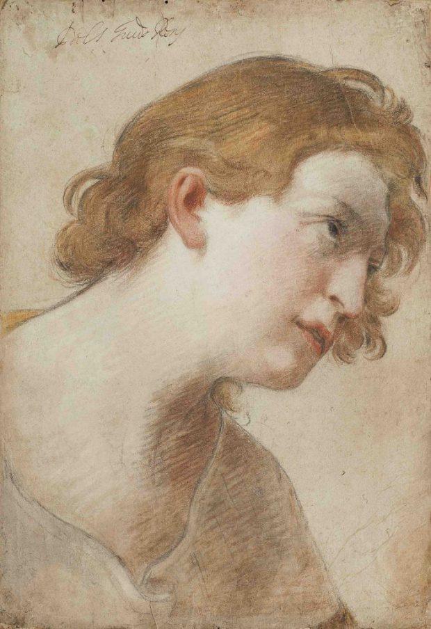 Guido Reni, Étude de tête d'ange, vers 1620, pierre noire, sanguine et pastel sur papier marou é sur vélin - 42,5 x 29,5 cm Galerie Marty.