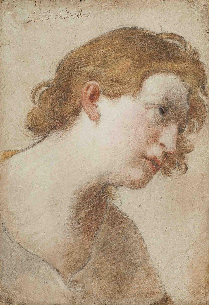 Guido-Reni-Etude-de-tete-d-ange-vers-1620-pierre-noire-sanguine-et-pastel-sur-papier-marou-sur-velin-Galerie-Marty