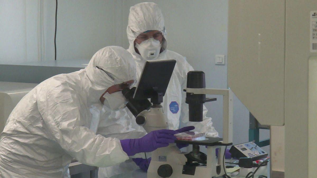 Les médecins du laboratoire Virpath à Lyon effectuent des recherches sur le Coronavirus.