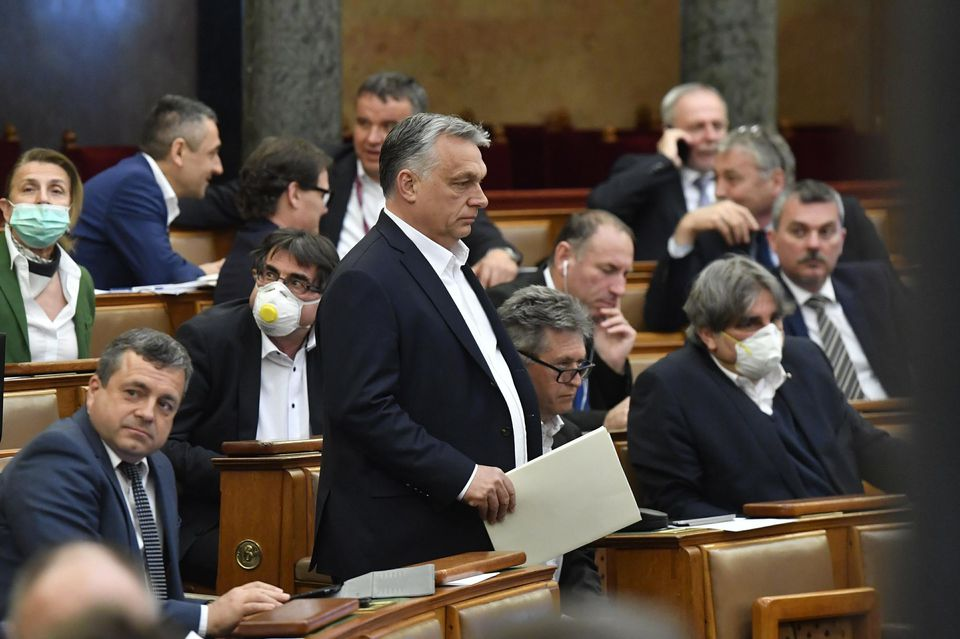 Viktor Orban lors d'une session au parlement hongrois le 30 mars. Photo : Zoltan Mathe/AP