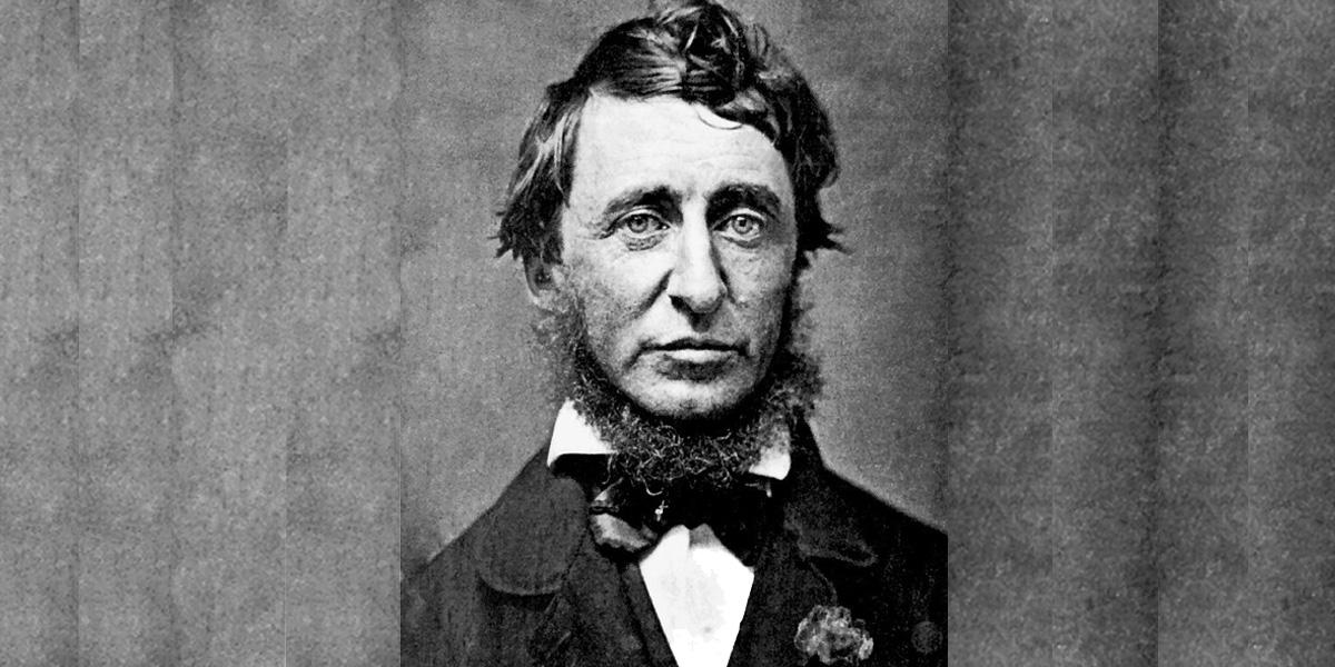 Portrait noir et blanc de HD Thoreau